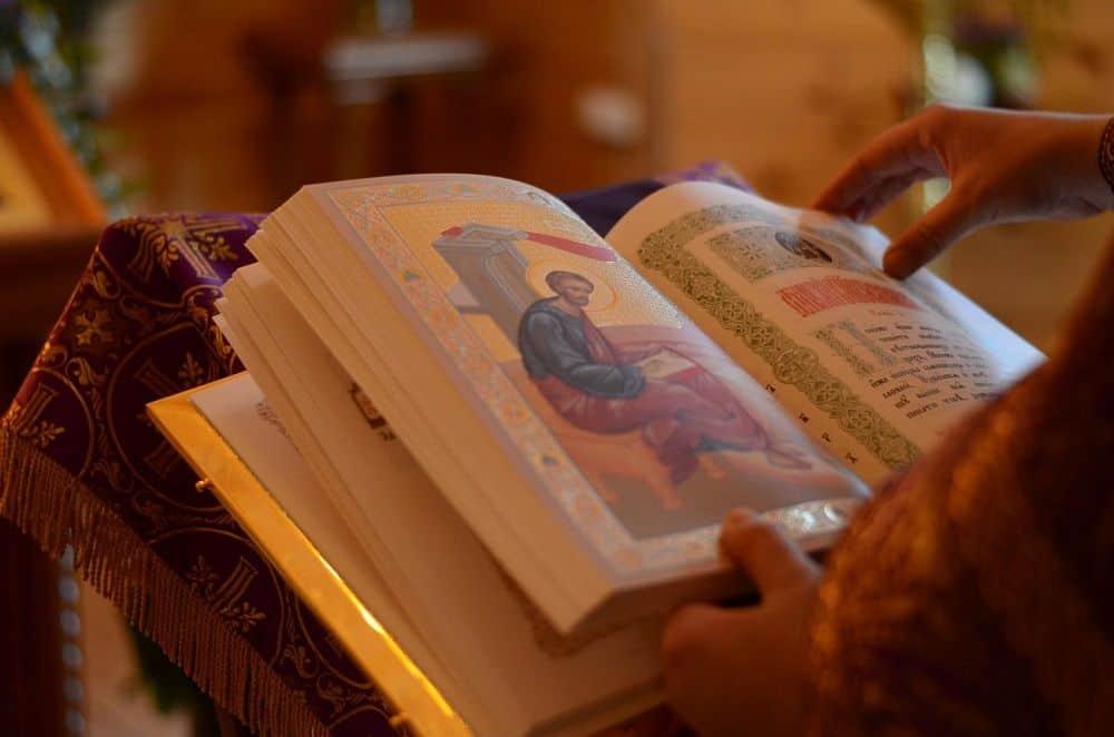 Читать Тропари, глас 2 после Кафизмы 17