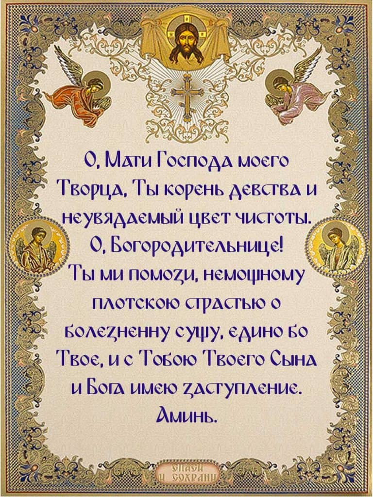 Скачать бесплатно на телефон молитву при плотской брани преподобного Макария Оптинского