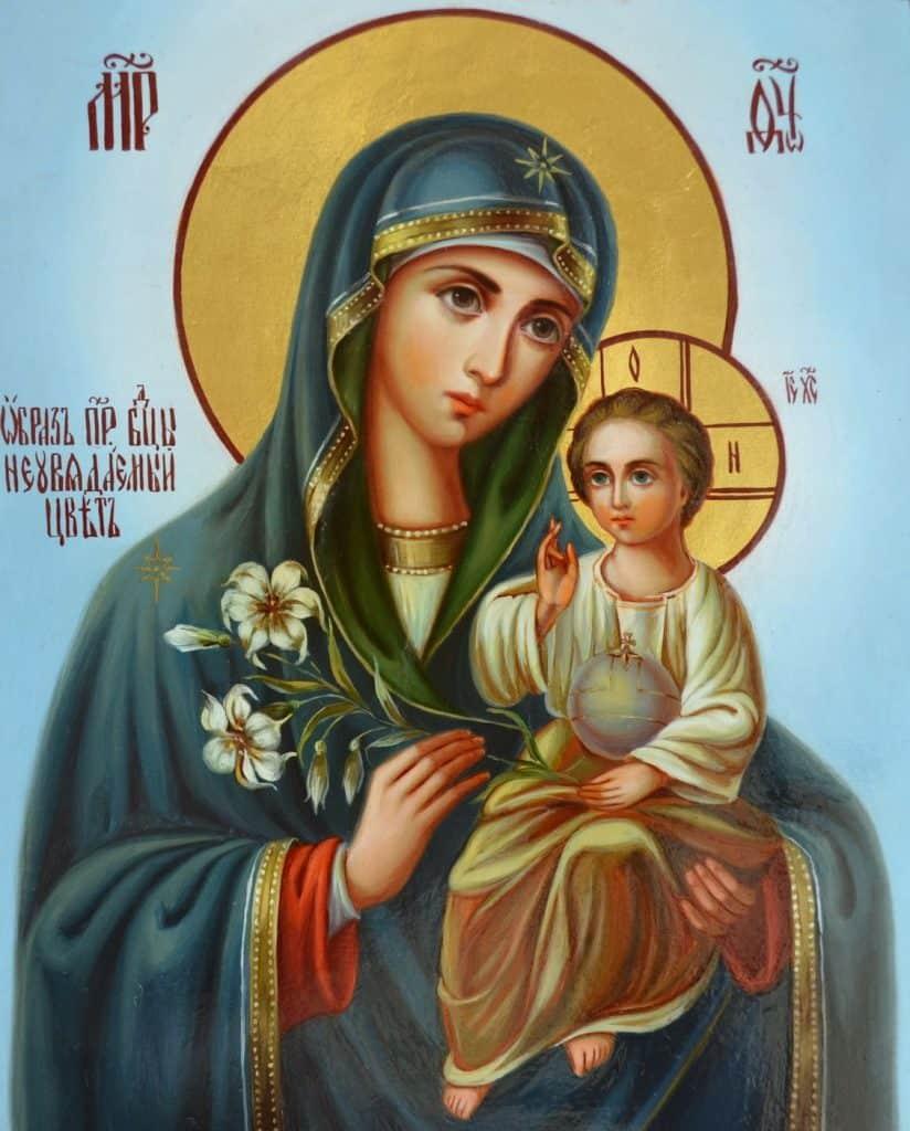 Текст молитвы Пресвятой Богородице о замужестве, любви в личной жизни на русском языке – читать онлайн, скачать бесплатно